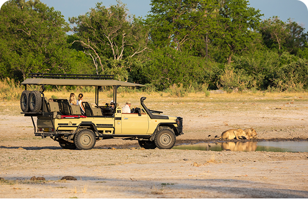 27 Night Western Africa Safari Photo